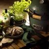 Керамический угольный гриль Big Green Egg Mini MAX фото_8